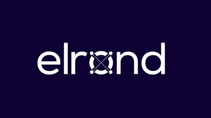 Elrond CEO' su Blockchain Teknolojisini Daha Fazla Yaymak İstiyor: Hedef 1 Milyar Kişi