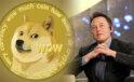 Elon Musk, Ortağının Dogecoin Vakfı ile Bağlantılı Olduğunu Reddetti