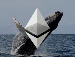 Ethereum Balinaları Kripto Varlığı Yığınlamaya Devam Ediyor