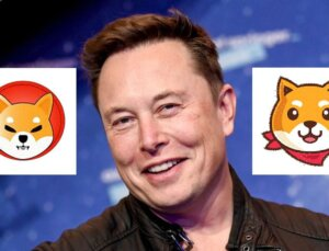 Shiba Inu, Elon Musk'ın Paylaşımı ile Uçuşa Geçti